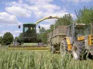 CAPA PRODUCTION AGRICOLE ET UTILISATION DU MATERIEL