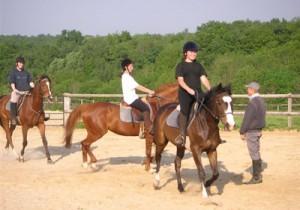 BPJEPS équitation