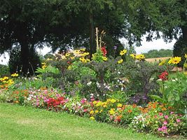 Capa travaux paysagers la r union for Entretien jardin reunion